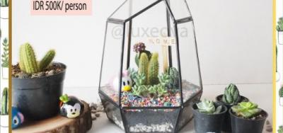 Terrarium Workshop Bandung – November 2017